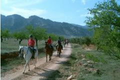 Ruta a caballo al embalse de la bolera
