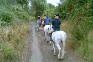 Rutas a caballo casas cueva cazorla paseo