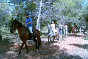 rutas caballo por sierra