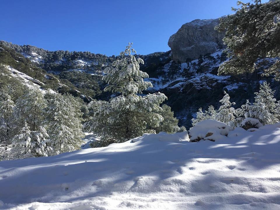 Donde disfrutar de la nieve en cazorla pico caba as - Casas rurales en la nieve ...